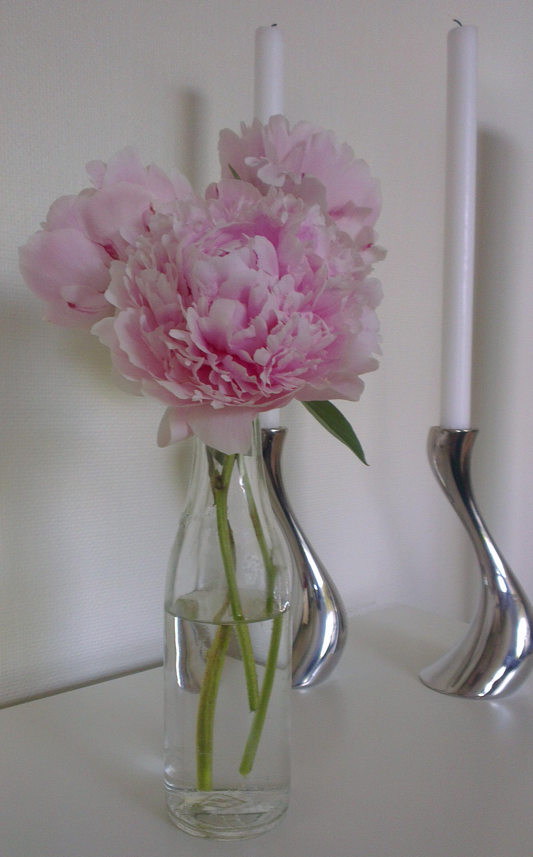 Blomster__i_vase